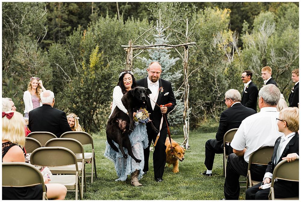 carrying stubborn dog at wedding