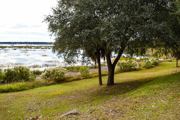elopement with nature in beaufort sc
