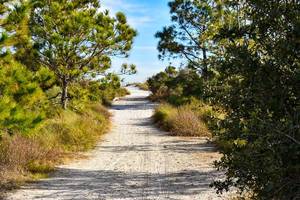 natural beach path at Burkes Beach on Hilton Head Island South Carolina
