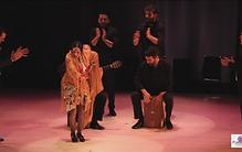 flamenco6.png