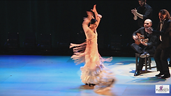 flamenco8.png
