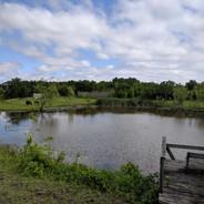 North Pond dock