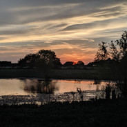Sunset on the South Pond