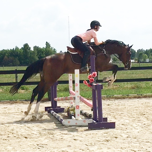 "2'0"" (learning to jump early summer)"