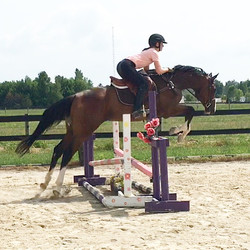 """2'0"""" (learning to jump early summer)"""
