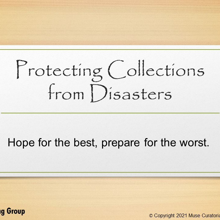 Protecting Collections from Disasters