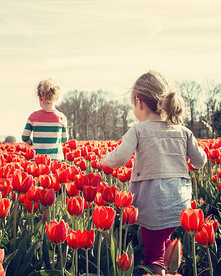 two_girls_walking_with_tulips_in_holland