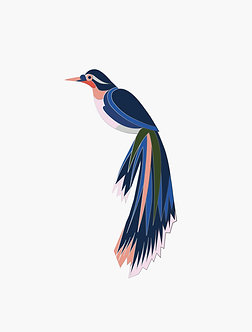 Pin's oiseaux émaillés