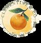 Clementine & Co. Picnics 2 (1).png