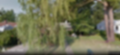 Screen Shot 2020-02-21 at 11.17.47 PM.pn