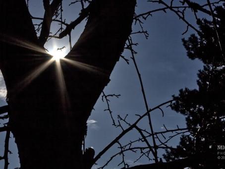 Sun Star Photography Experiments