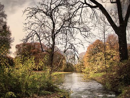 Autumn in English Garden (Munich)