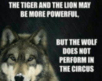 the-tiger-and-the-lion-may-be-more-power