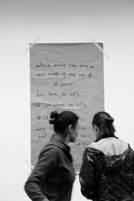 Workshop_wild_collective_03.jpg