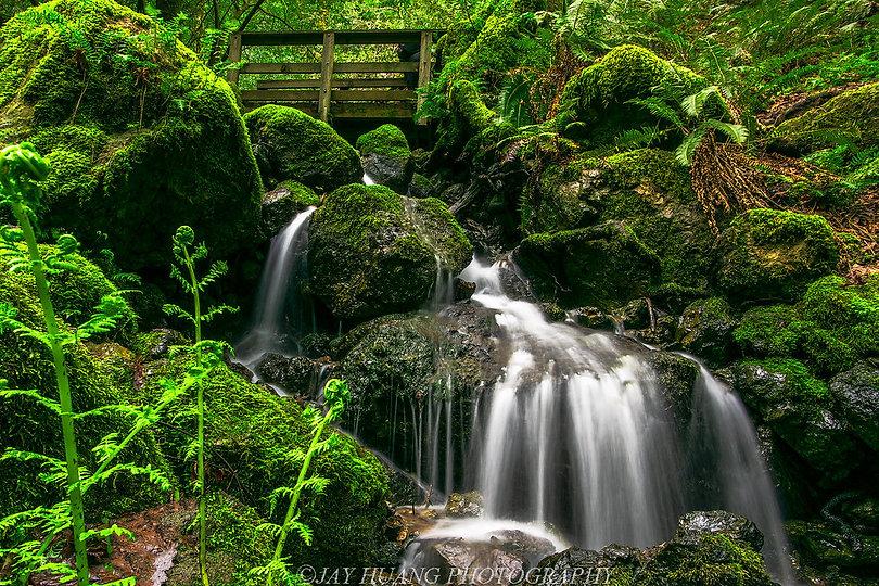 Cataract creek.jpg
