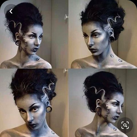 Bride of Frankenstein inspired wig commission