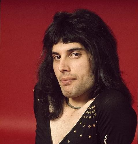 Freddie Mercury wig commission