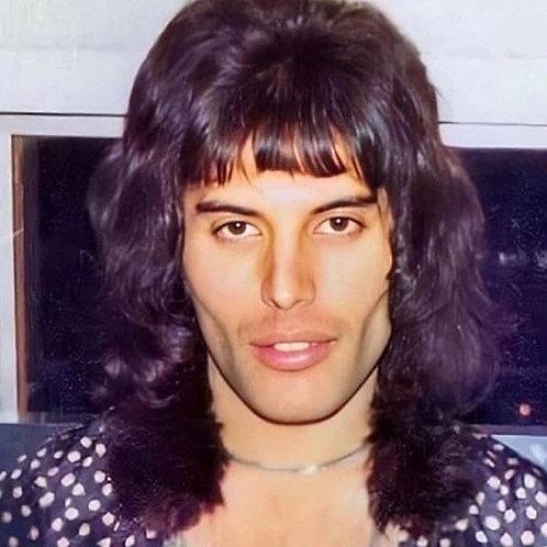 Freddie Mercury 1974 inspired wig commission