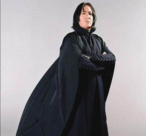 Commission: Severus Snape cosplay + wig