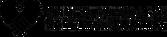 cssj-logo.png