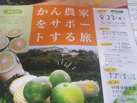 8/23「みかん農家をサポートする旅」ご案内
