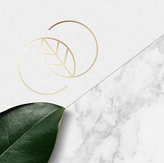 Liana_Cover Image.jpg