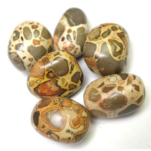Leopardite Tumblestone