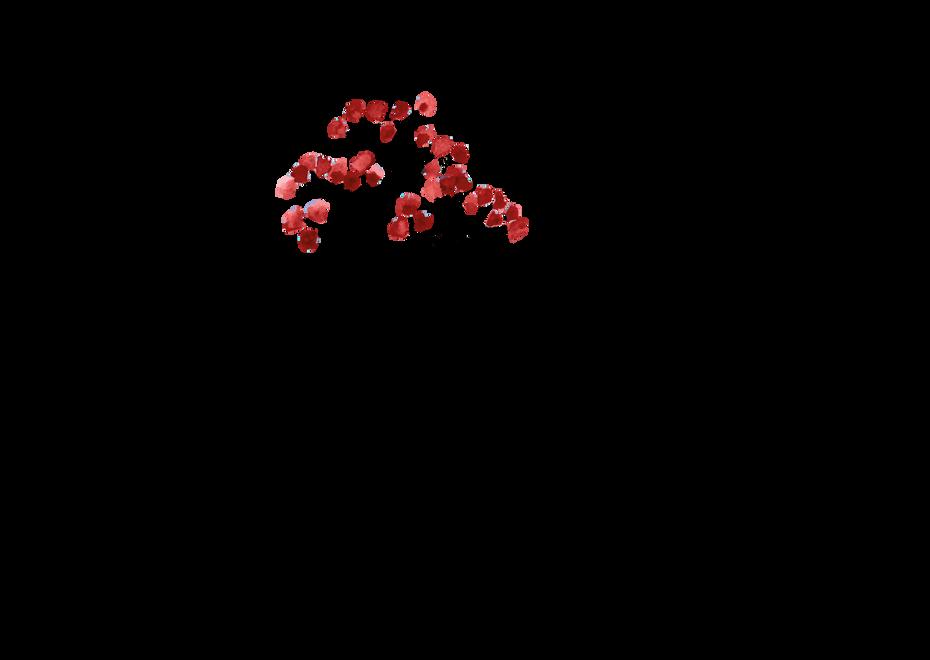 Logotype illustré