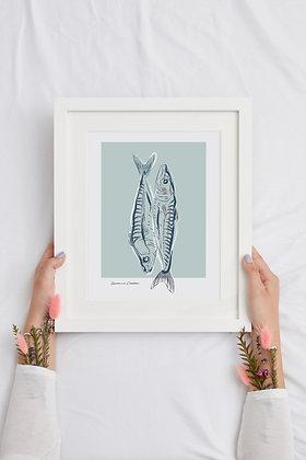 Illustration poissons - Affiche A4