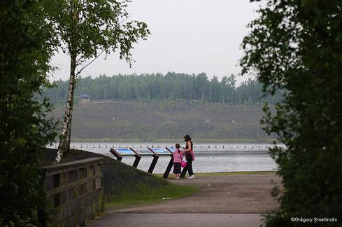 Regard sur le lac