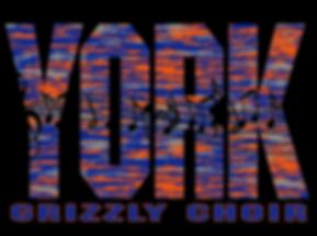 York Choir shirt 18-19.PNG