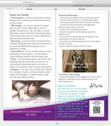 QT CATs info pamphlet back.jpg