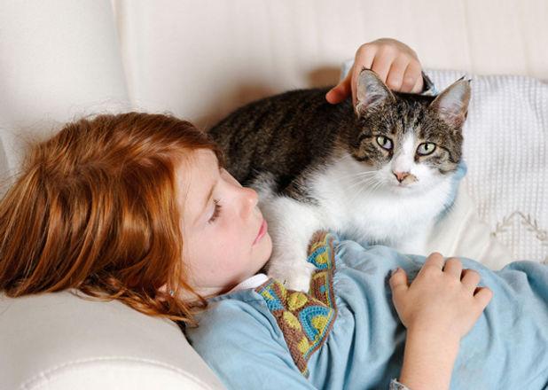 child-cat-interaction-CR0B0X-590mk042514