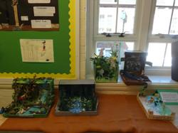 School Display Summer - Picture 7