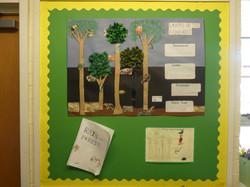 School Display Summer - Picture 8