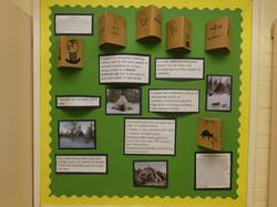 School Display Summer - Picture 11