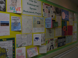 School Display Spring - Picture 11