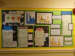 School Display Summer - Picture 14