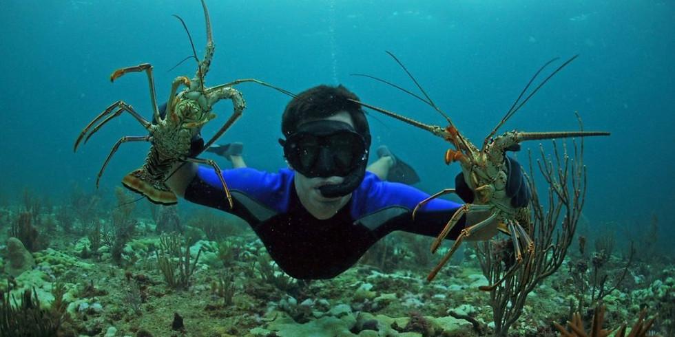 Key West Lobster Adventure #2
