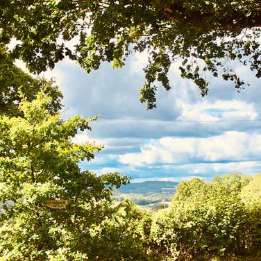 Beautiful Kent Countryside