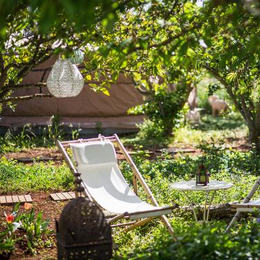 Beautiful Casa Solara gardens