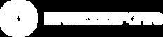 BREEZE Sports_logo.png