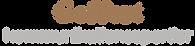 logo geffert.png