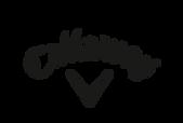 partner logos callaway.png