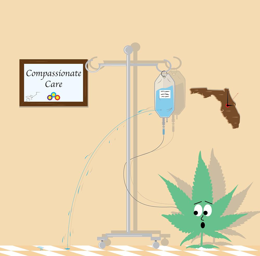 Palm Coast marijuana doctors and cards