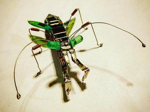 Metamantis Green