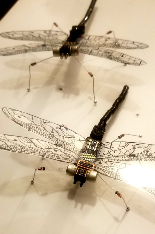 Dataflies