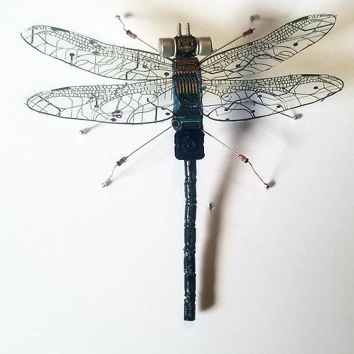 Macromia Datafly