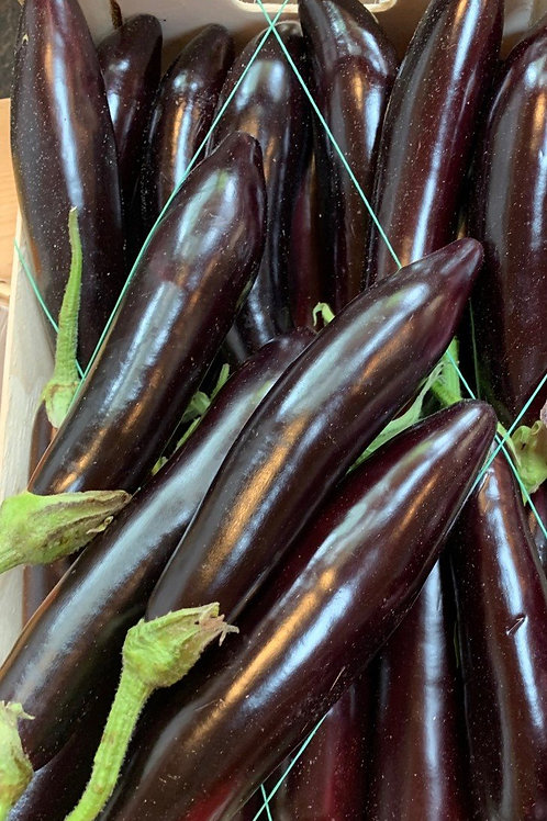 Aubergine - Italian long