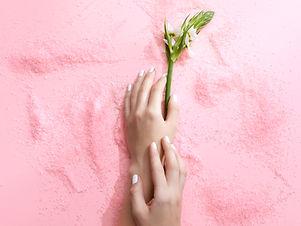 Fleur rose sur